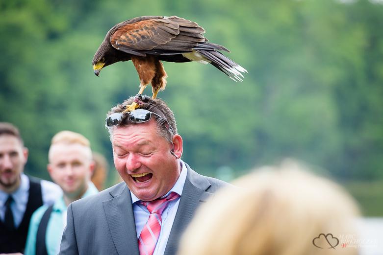 Adler auf dem Kopf eines Hochzeitsgast